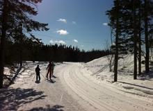 Ski de fond au Club plein air
